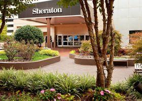 فندق شيراتون أتلانتا