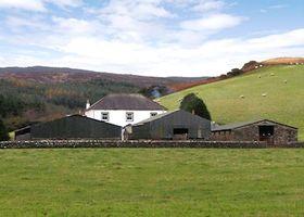 Homestone Farm