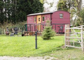 The Shire Hut