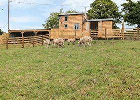 Shepherds Cabin at Titterstone
