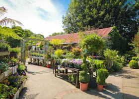 River Gardens Cottage
