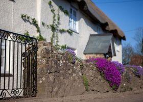 Fernside Cottage