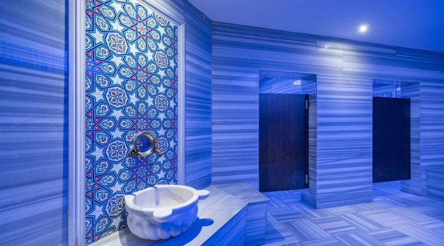 فندق كلاريون إسطنبول محمود بيه-8 من 45 الصور