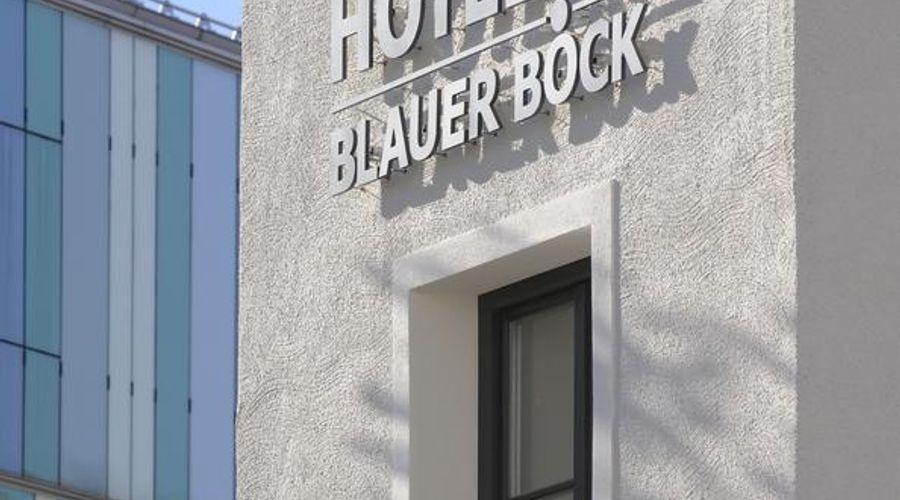 فندق بلاور بوك-7 من 28 الصور