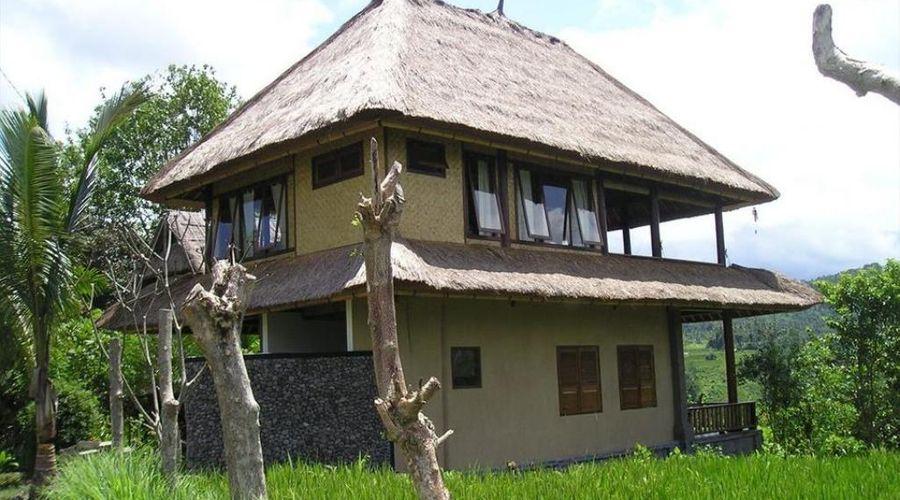 Kubu Tani-1 من 25 الصور