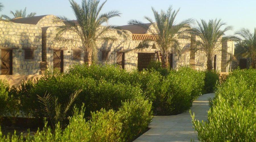 Aliyah Lodge Hotel-22 من 30 الصور