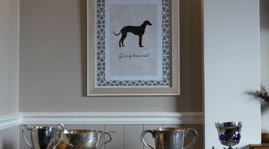 The Greyhound-17 of 20 photos