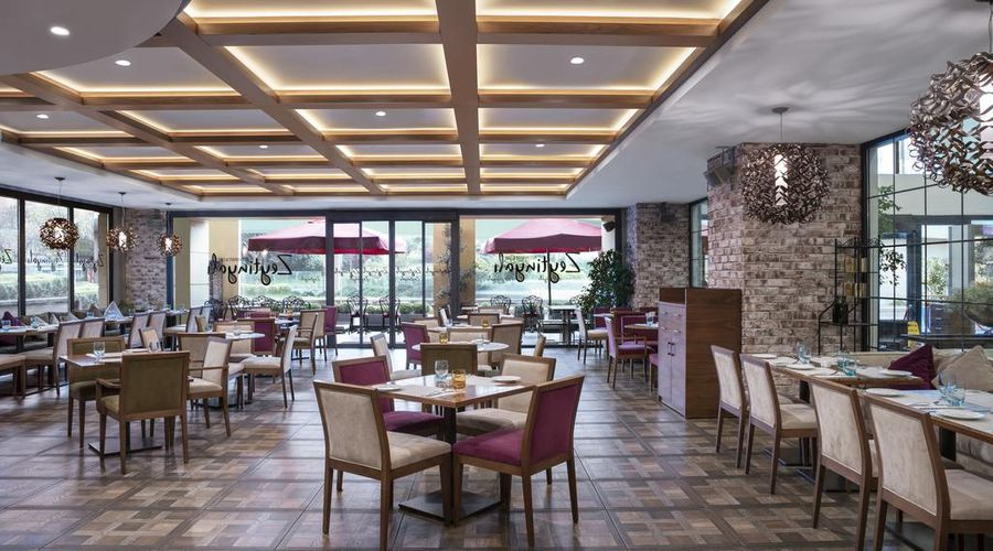 فندق بيز سيفاهير اسطنبول-18 من 35 الصور