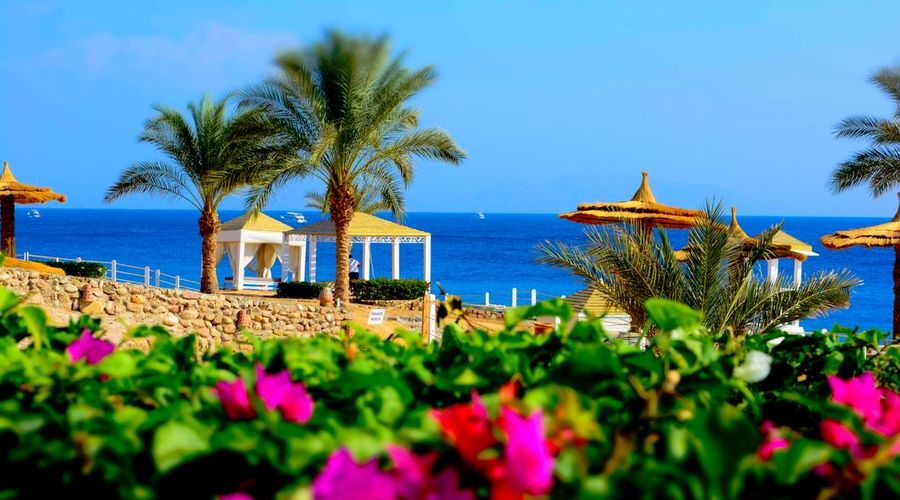 Royal Monte Carlo Sharm Villas & Suites (Adults Only)-Ultra All Inclusive -11 of 36 photos