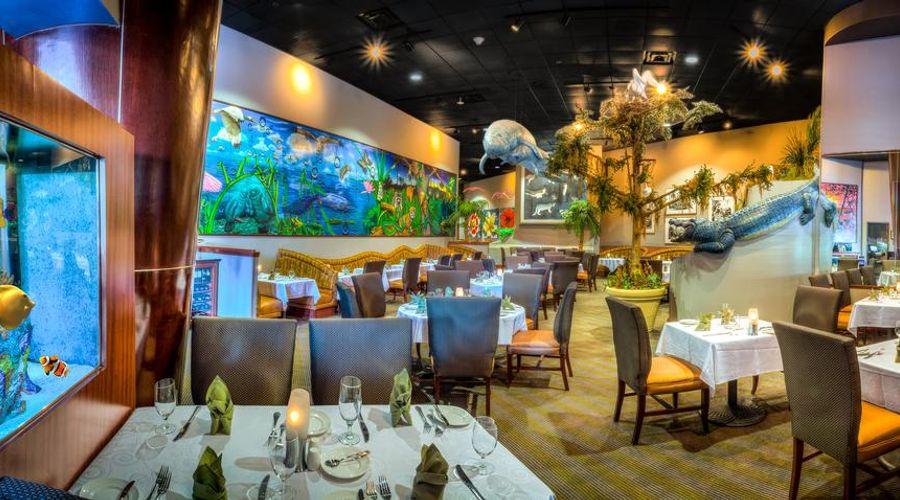 Rosen Centre Hotel Orlando Convention Center-15 of 31 photos
