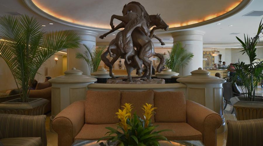 Polo Towers by Diamond Resorts-3 of 25 photos