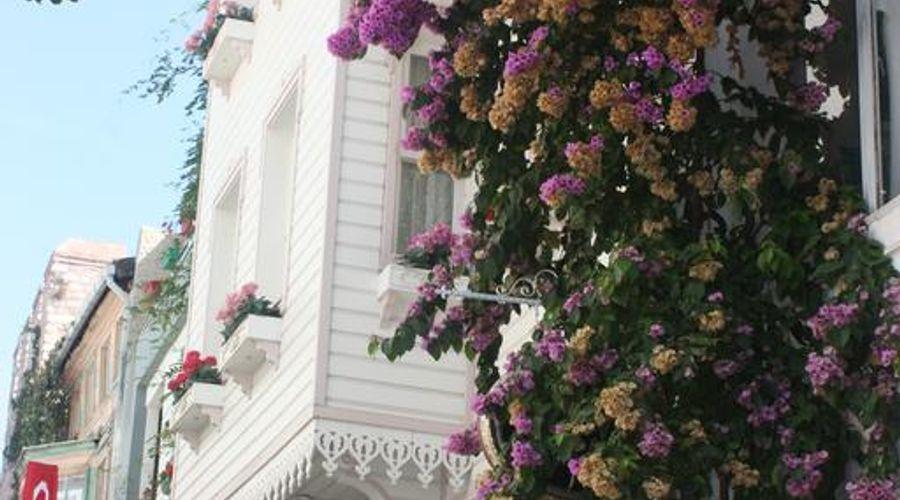قصر رومانتيك-5 من 20 الصور