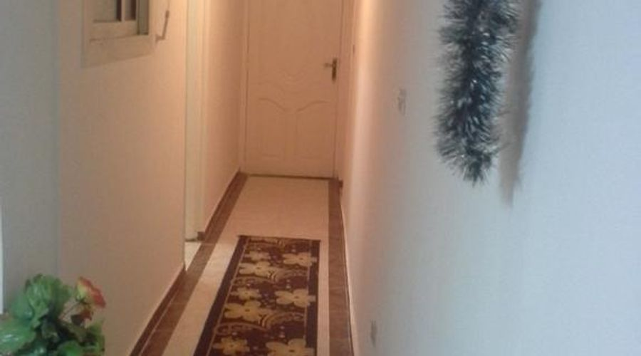Star Plaza Guesthouse And Apartments-5 من 20 الصور