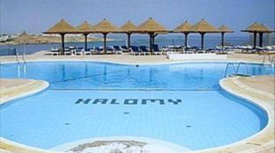 Halomy Grand Sharm-4 of 19 photos