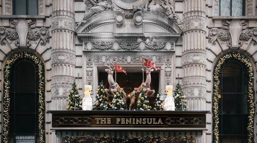 ذا بيننسولا نيويورك-5 من 42 الصور