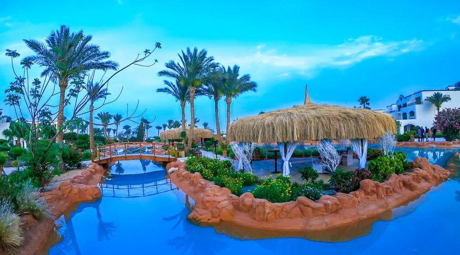 Regency Plaza Aqua Park and Spa Resort-16 of 35 photos