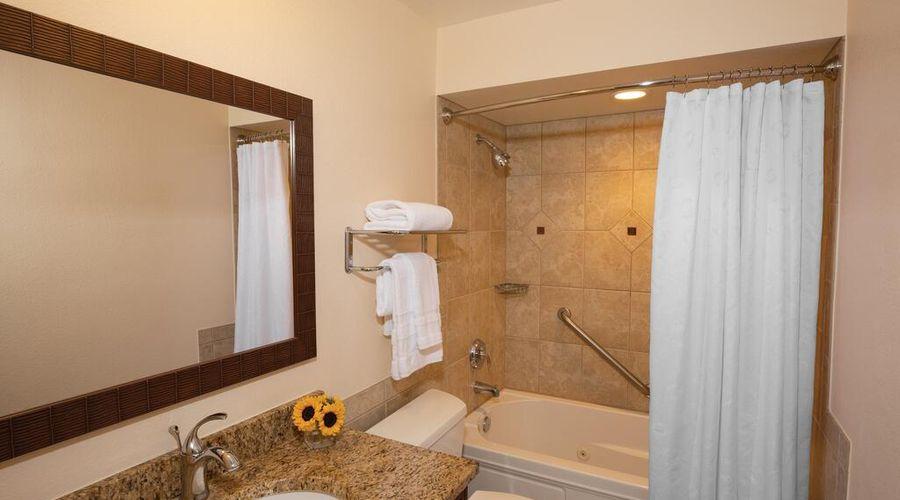 Sheraton Vistana Resort Villas-17 of 39 photos