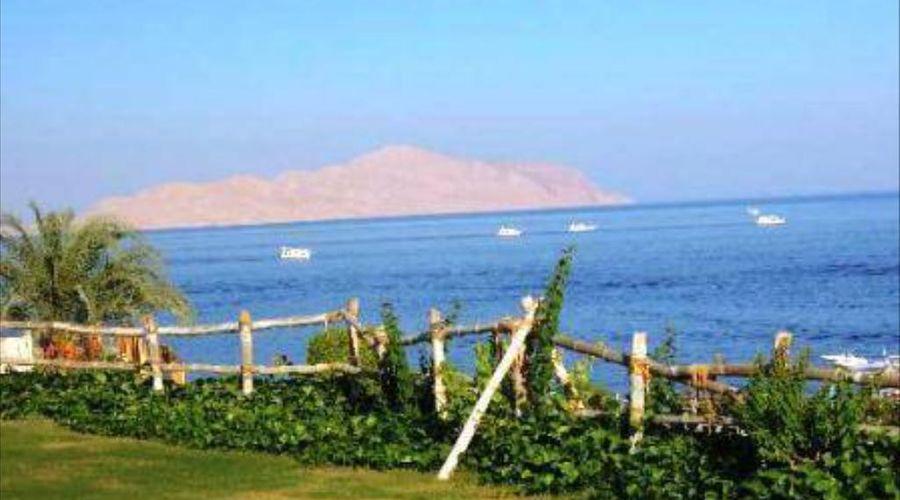 Island View Resort-10 of 20 photos