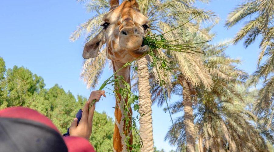 منتجع الإمارات بارك-11 من 36 الصور