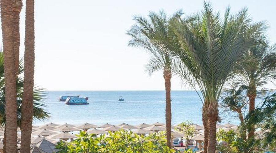 فندق نوفوتيل شرم الشيخ -21 من 37 الصور