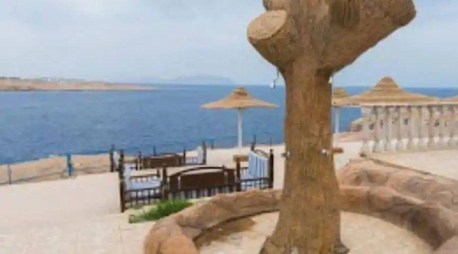 Halomy Grand Sharm-16 of 19 photos