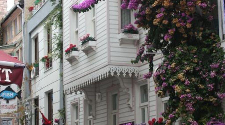 قصر رومانتيك-8 من 20 الصور