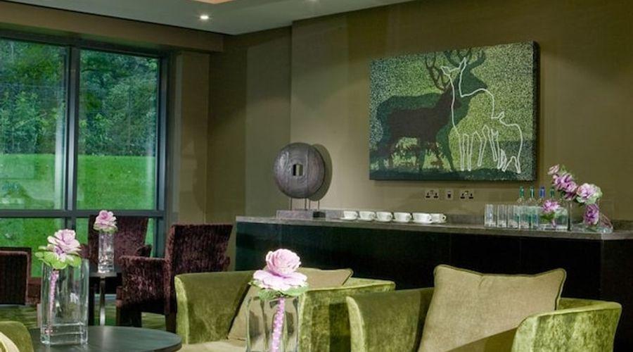Rhinefield House Hotel-36 of 58 photos