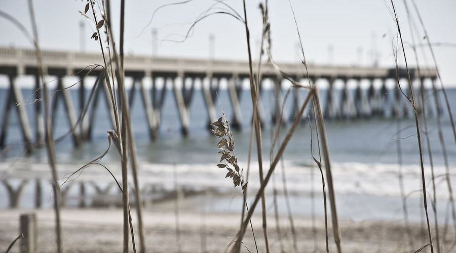 Hampton Inn & Suites Wilmington/Wrightsville Beach-69 of 75 photos