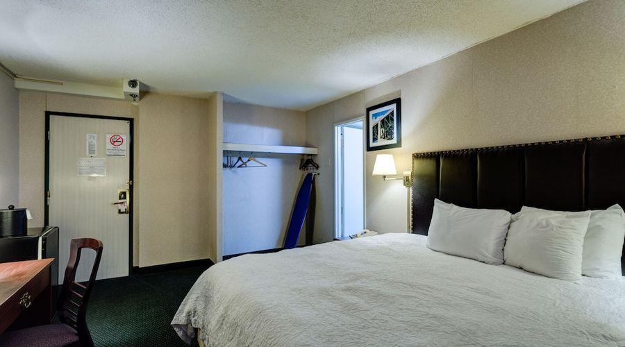 University Hotel & Suites-11 of 36 photos