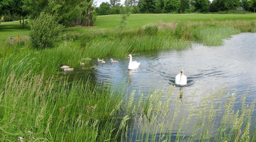 Hilton Belfast Templepatrick Golf & Country Club-75 of 94 photos