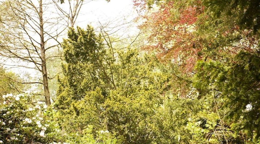 Hogarths Stone Manor-111 of 119 photos
