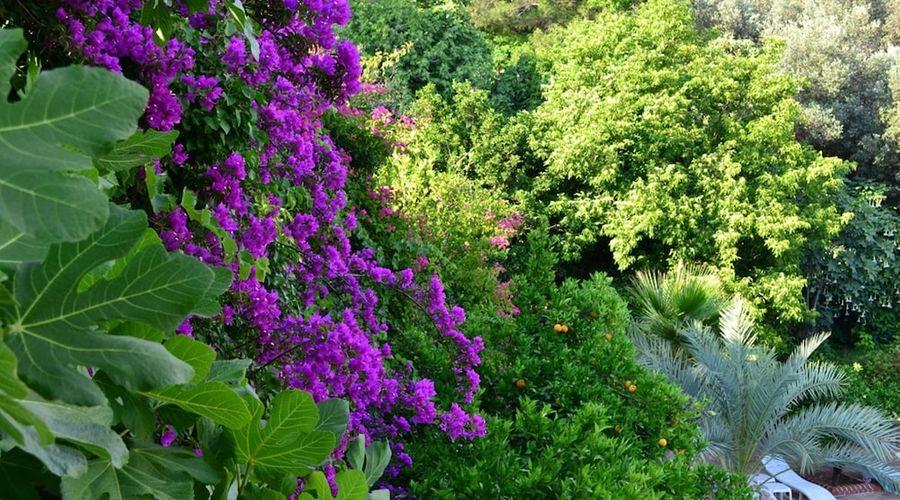 Paradise Garden Hotel-52 of 60 photos
