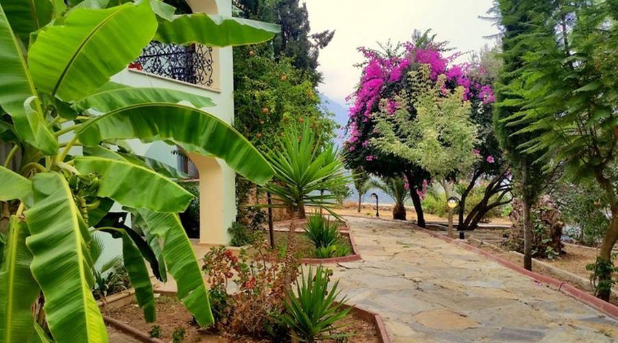 Paradise Garden Hotel-49 of 60 photos
