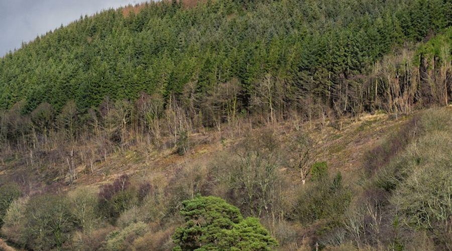 YHA Brecon Beacons Danywenallt - Hostel-17 of 26 photos