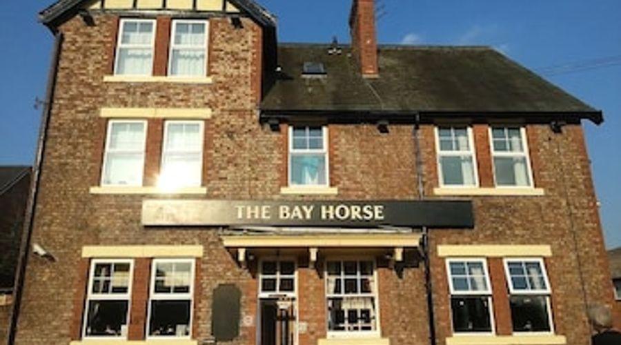 The Bay Horse-1 of 33 photos