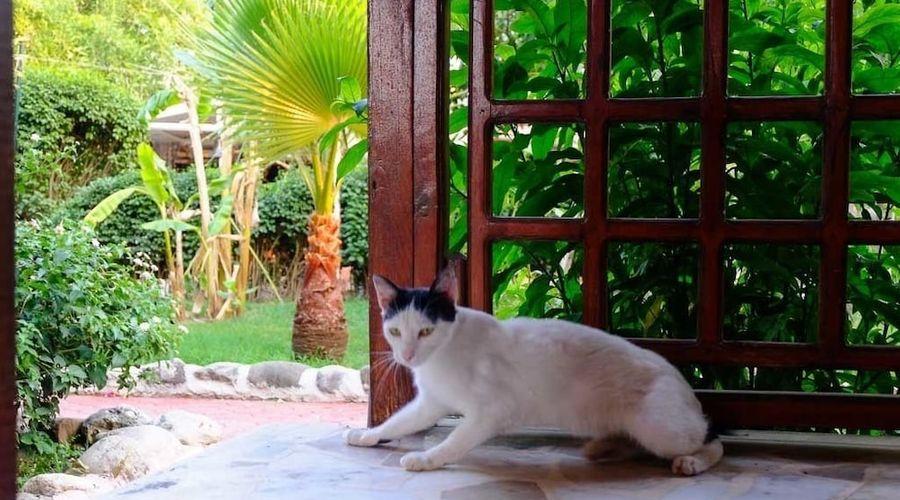 Erendiz Kemer Resort-23 of 53 photos