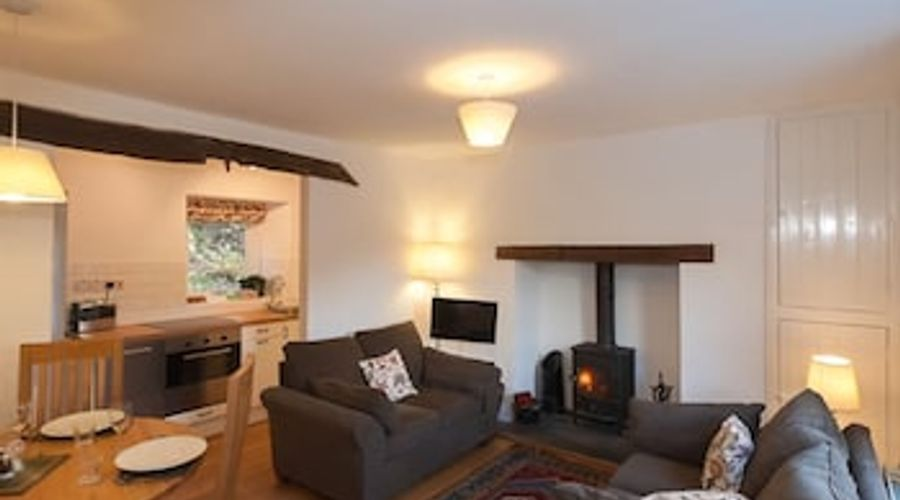 Bronfelin and Troed y Rhiw Holiday Cottages-9 of 21 photos