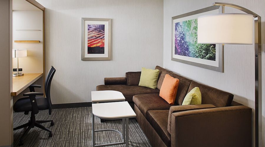 Springhill Suites by Marriott Carle Place Garden City-5 of 18 photos