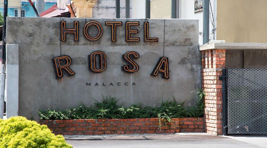 Rosa Malacca-82 of 98 photos