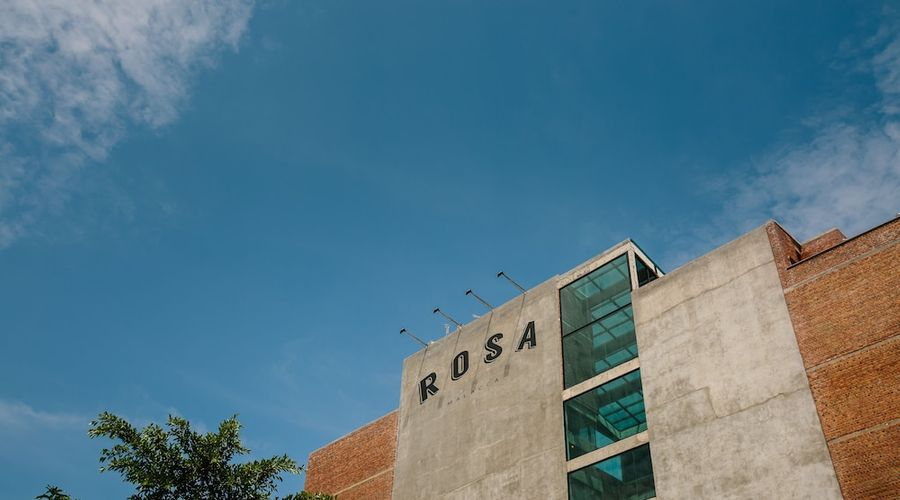 Rosa Malacca-81 of 98 photos