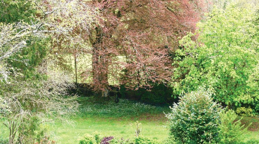 Afon Rhaiadr Country House-22 of 52 photos