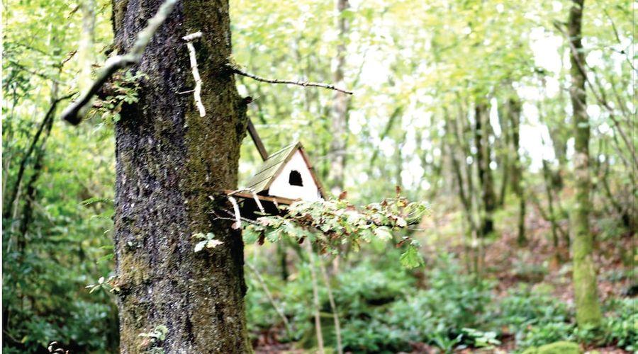 Afon Rhaiadr Country House-40 of 52 photos