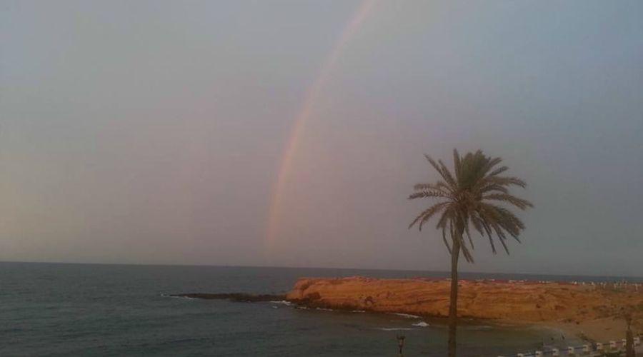 Delphin El Habib-81 of 91 photos
