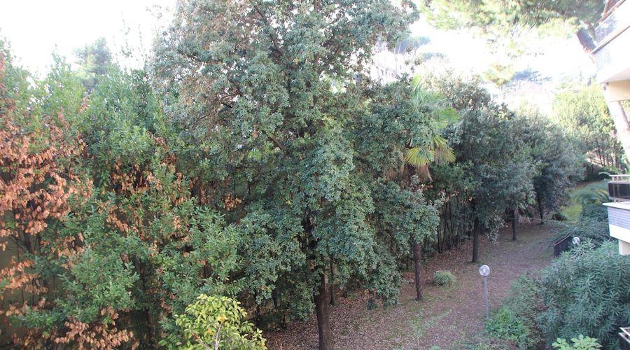 بد رومز روم-17 من 36 الصور