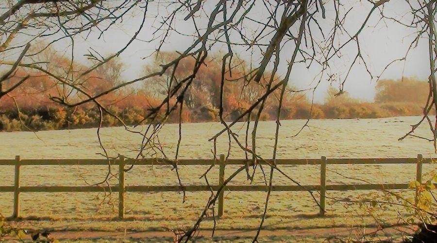 Nutley Farm-45 of 49 photos