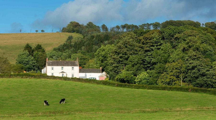 Bishopcleugh Guest House-1 of 21 photos