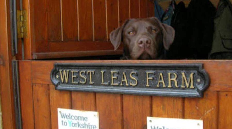 West Leas Farm-14 of 15 photos