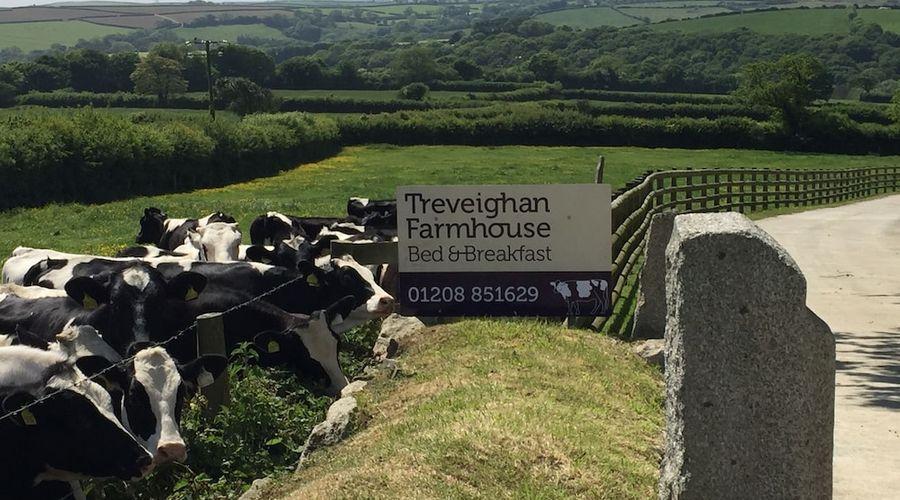 Treveighan Farmhouse-18 of 18 photos
