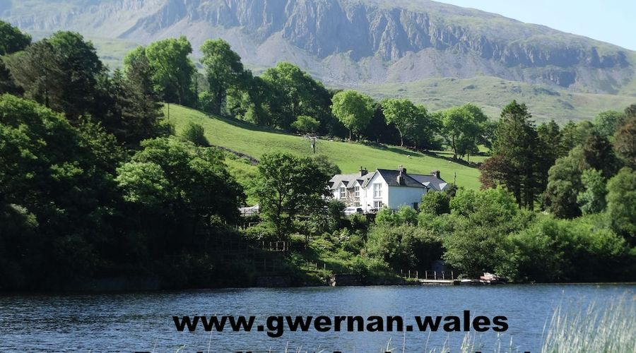 Gwernan Lake Hotel-1 of 21 photos