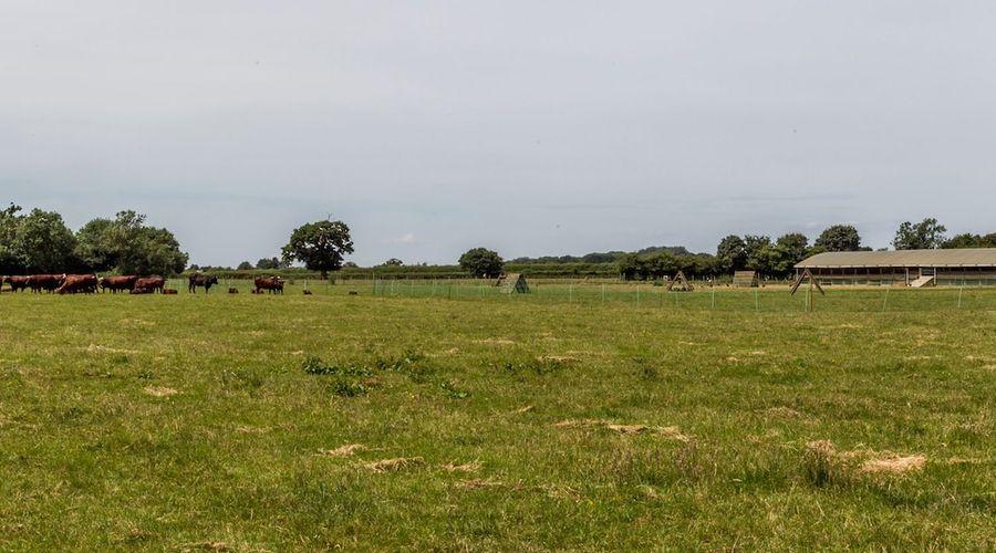 Oxen Cottage-14 of 14 photos